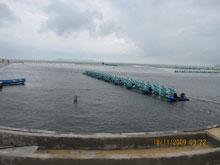 SongCau_Aquaculture